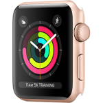 Apple Watch Series 3/2/1 (42mm)